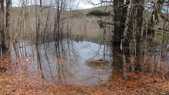 Here you see the shoreline of the Pemigewasset Sea as it laps at the old roadway along Needleshop Brook. Photo credit: Tim Carter - W3ATB