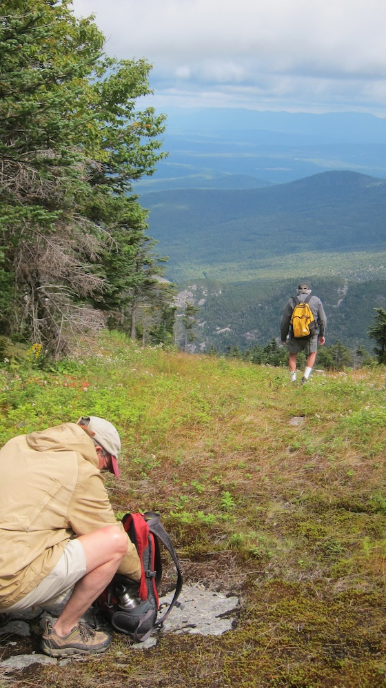 We setup just below where you see Dick with his yellow backpack on his back. Photo credit: Tim Carter- W3ATB