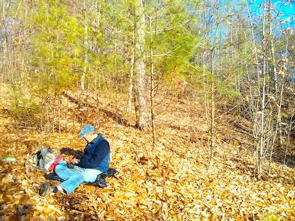 The leaves were dry and it was so warm in the sun! Photo credit: Tim Carter - W3ATB