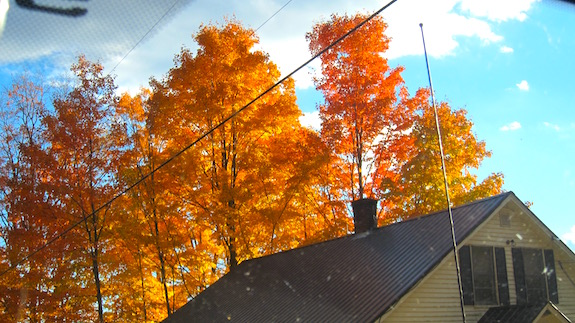 I wish my wife Kathy had been with me. This is one of her favorite color combinations. The fall of 2016 in central New Hampshire was absolutely one of the best. (C) Copyright 2016 Tim Carter
