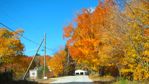 Stunning color heading up Dana Hill Road in New Hampton, NH. (C) Copyright 2016 Tim Carter