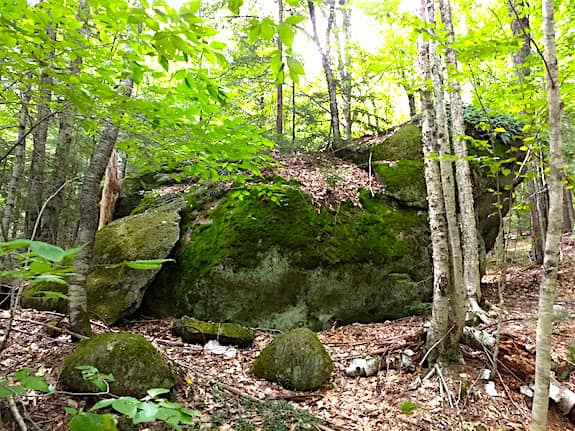 fay state forest glacial boulder