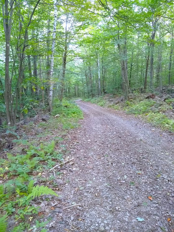 class 6 road to dearborn pond