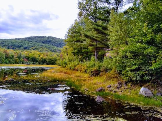 dearborn pond nh