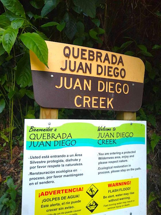 juan diego creek el yunque